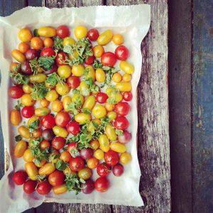 Quand s'éclatent les tomates sur la plaque!