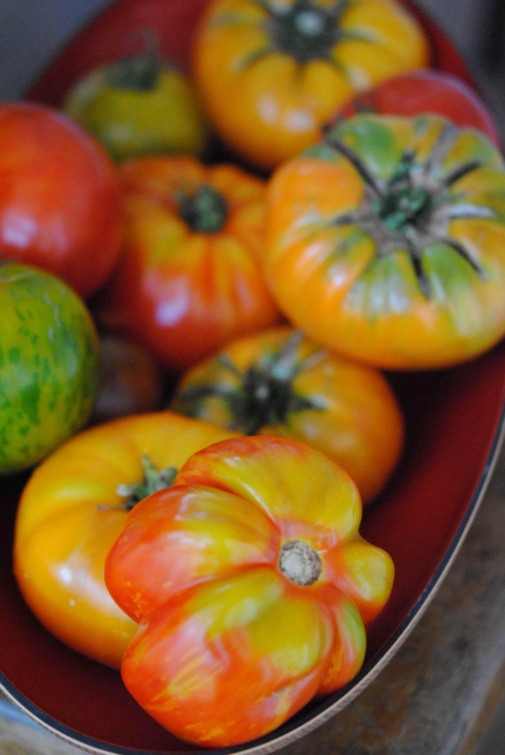 Salade de tomates ancestrales à l'huile d'olives Hojiblanca