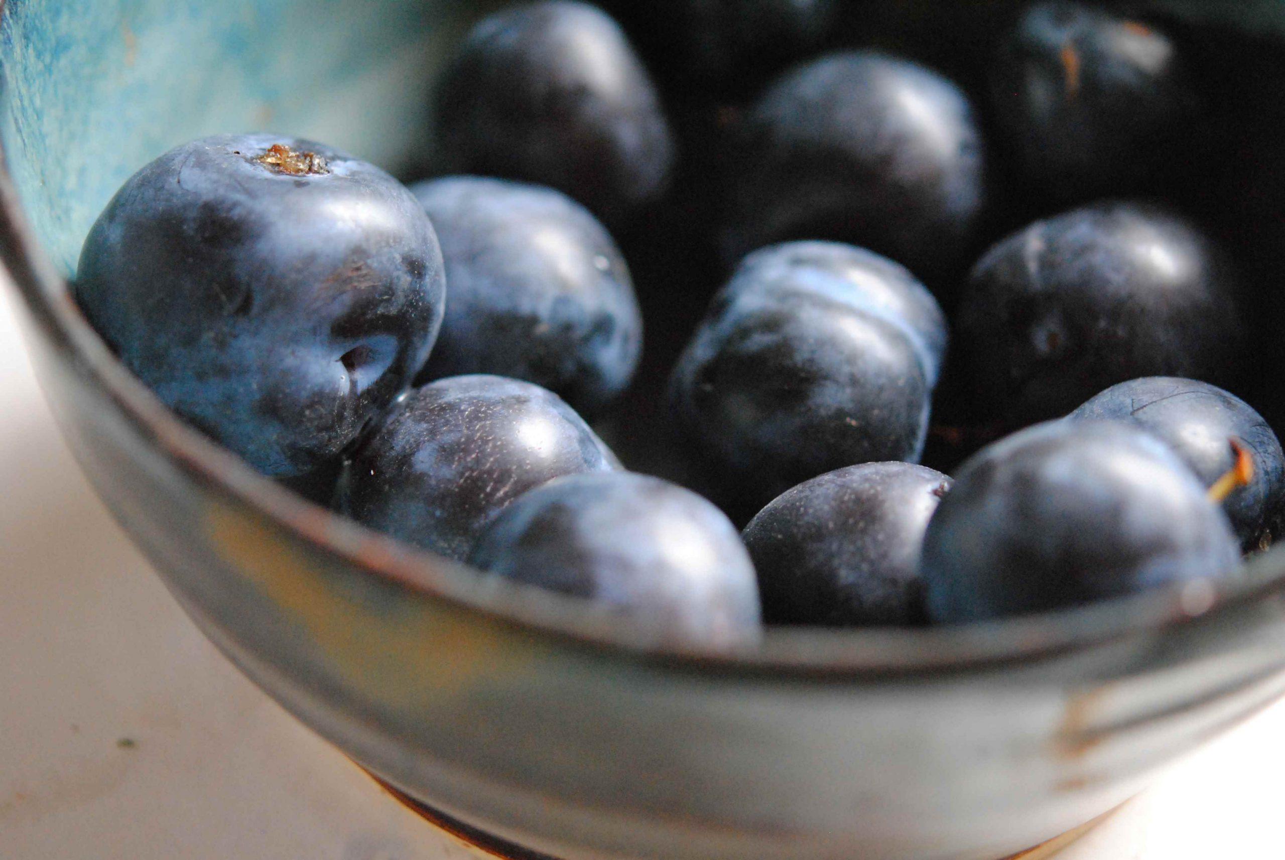 Compote de prunes et sureau